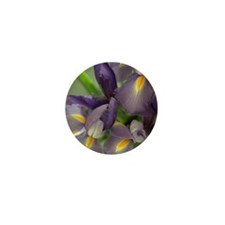 Cascade Purple Iris Flower Mini Button (100 Pack)