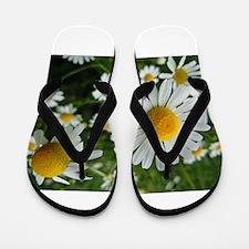 DAISIES GALORE Flip Flops