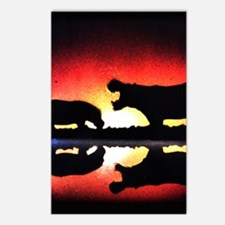 Hippos Silhouetted at Sunrise Postcards (Package o
