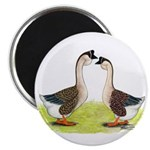 African Geese 2.25