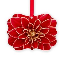 Red Dahlia Closeup Ornament