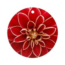 Red Dahlia Closeup Round Ornament