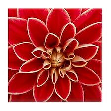 Red Dahlia Closeup Tile Coaster