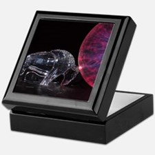 Bull Bison Power Keepsake Box