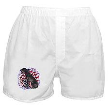Dane Patriotic Boxer Shorts