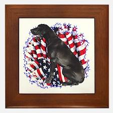 Dane Patriotic Framed Tile