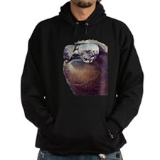 Big Money Sloth Hoodie