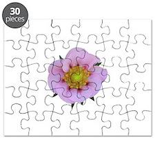 Tristan Strawberry Bloom Puzzle