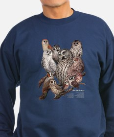 Owls of the Northeast Jumper Sweater