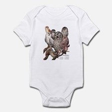 Owls of the Northeast Infant Bodysuit