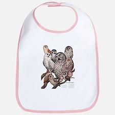 Owls of the Northeast Bib