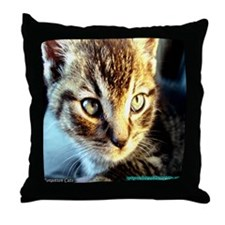 Forgotten Cats Throw Pillow