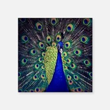 Cobalt Blue Peacock Sticker