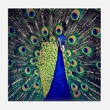 Cobalt Blue Peacock Tile Coaster