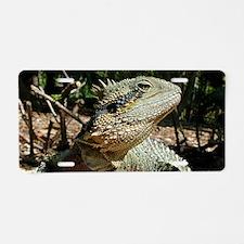 Water Dragon Aluminum License Plate