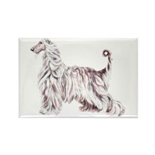 Afghan Hound Elegance Rectangle Magnet