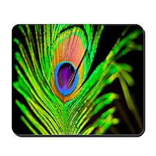 Neon Peacock Feather Mousepad