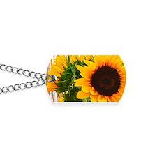 Sunflower III Dog Tags