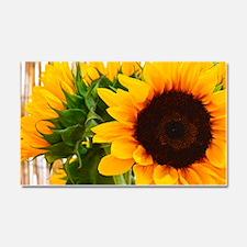 Sunflower III Car Magnet 20 x 12