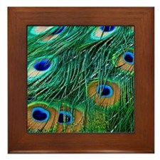 Peacock Feathers Framed Tile