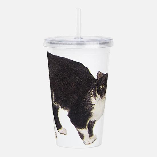 Manx cat Acrylic Double-wall Tumbler