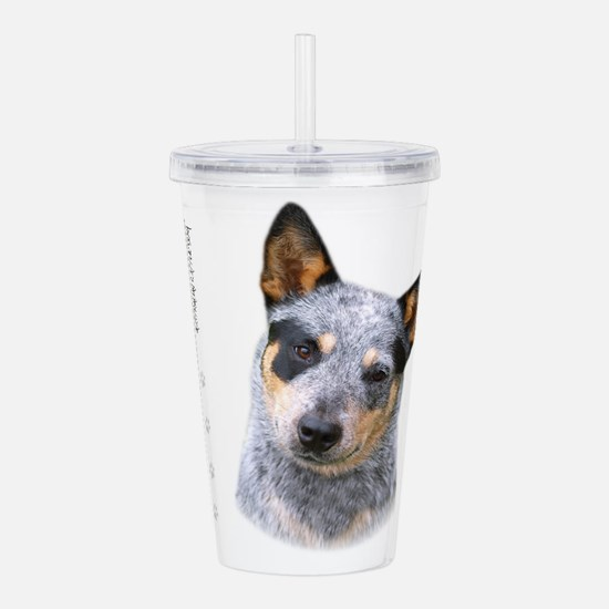 portrait9.png Acrylic Double-wall Tumbler
