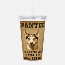 11-Wanted _V2.png Acrylic Double-wall Tumbler