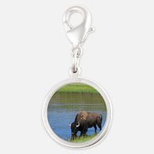 Yellowstone National Park Buffalo Souvenir Charms