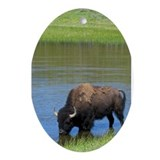 Yellowstone Oval Ornaments