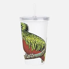 Quetzal Acrylic Double-wall Tumbler
