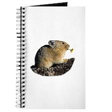 Wild rabbit Journal