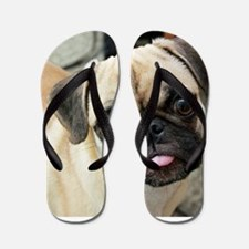 Pugsley The Pug Flip Flops