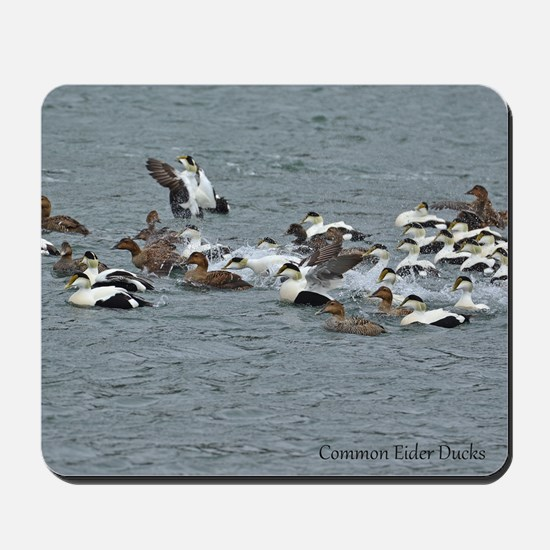 Eiders Mousepad