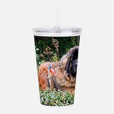 Leonberger dog Acrylic Double-wall Tumbler