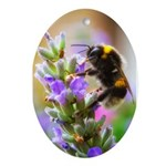 Humble Bumblebee Ornament (Oval)