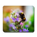 Humble Bumblebee Mousepad