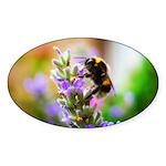 Humble Bumblebee Sticker (Oval)