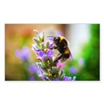 Humble Bumblebee Sticker (Rectangle)
