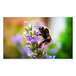 Humble Bumblebee Sticker (Rectangle 50 pk)