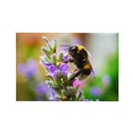 Humble Bumblebee Rectangle Magnet (100 pack)