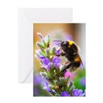 Humble Bumblebee Greeting Card