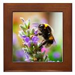 Humble Bumblebee Framed Tile