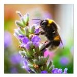 Humble Bumblebee Square Car Magnet 3