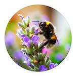 Humble Bumblebee Round Car Magnet