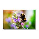 Humble Bumblebee Car Magnet 20 x 12