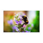 Humble Bumblebee 35x21 Wall Decal