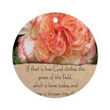 matthew630.jpg Ornament (Round)