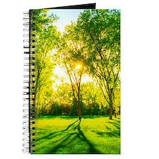 Green Forest Journal