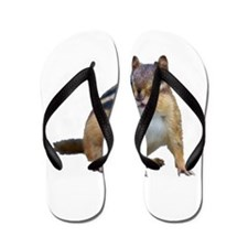 Cute Chipmunk Flip Flops