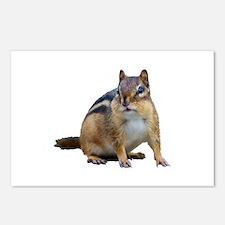 Cool Chipmunk lover Postcards (Package of 8)
